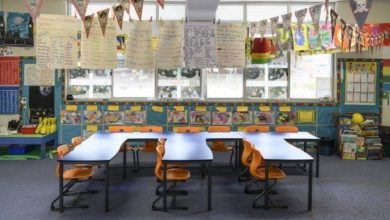 Things to Keep In Mind to Have a Visually Appealing Classroom