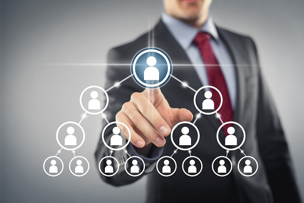 MLM consultants in India